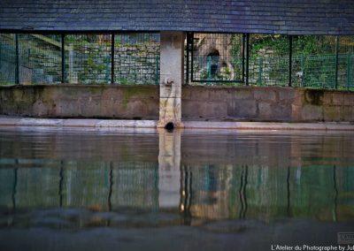 La gargouille du Lavoir des Fontaines - Carentan